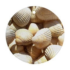 Tropical Exotic Sea Shells Ornament (Round)