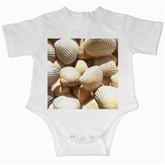 Tropical Exotic Sea Shells Infant Creepers