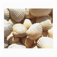Tropical Exotic Sea Shells Small Glasses Cloth (2-Side)