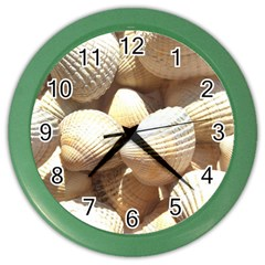 Tropical Exotic Sea Shells Color Wall Clocks
