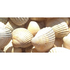 Tropical Exotic Sea Shells YOU ARE INVITED 3D Greeting Card (8x4)