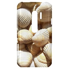 Tropical Exotic Sea Shells HTC Evo 3D Hardshell Case