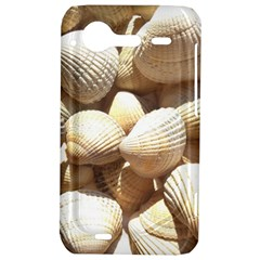 Tropical Exotic Sea Shells HTC Incredible S Hardshell Case