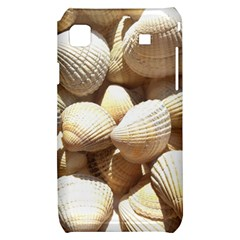 Tropical Exotic Sea Shells Samsung Galaxy S i9000 Hardshell Case