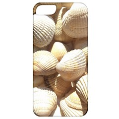 Tropical Exotic Sea Shells Apple iPhone 5 Classic Hardshell Case