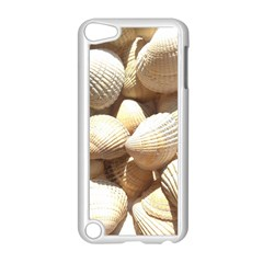 Tropical Exotic Sea Shells Apple iPod Touch 5 Case (White)
