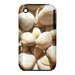 Tropical Exotic Sea Shells Apple iPhone 3G/3GS Hardshell Case (PC+Silicone)