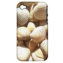 Tropical Exotic Sea Shells Apple iPhone 4/4S Hardshell Case (PC+Silicone)