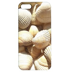 Tropical Exotic Sea Shells Apple iPhone 5 Hardshell Case with Stand