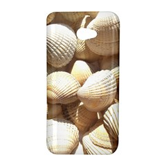 Tropical Exotic Sea Shells HTC Butterfly S/HTC 9060 Hardshell Case