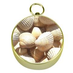 Tropical Exotic Sea Shells Gold Compasses