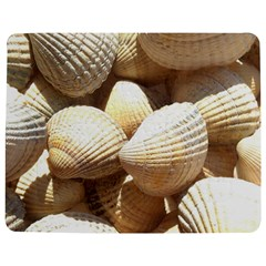 Tropical Exotic Sea Shells Jigsaw Puzzle Photo Stand (Rectangular)