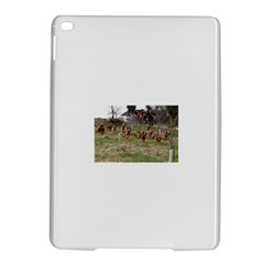 Bloodhounds Working iPad Air 2 Hardshell Cases