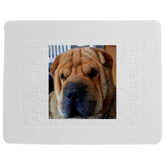 Shar Pei / Chinese Shar Pei Jigsaw Puzzle Photo Stand (Rectangular)