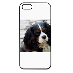 Cavalier King Charles Spaniel 2 Apple iPhone 5 Seamless Case (Black)