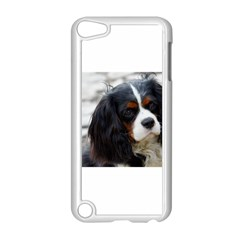 Cavalier King Charles Spaniel 2 Apple iPod Touch 5 Case (White)