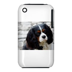 Cavalier King Charles Spaniel 2 Apple iPhone 3G/3GS Hardshell Case (PC+Silicone)