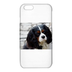 Cavalier King Charles Spaniel 2 iPhone 6/6S TPU Case