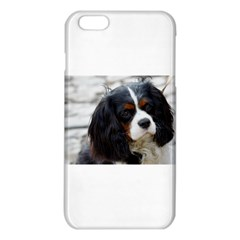 Cavalier King Charles Spaniel 2 iPhone 6 Plus/6S Plus TPU Case