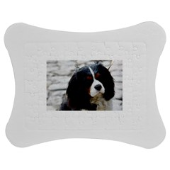 Cavalier King Charles Spaniel 2 Jigsaw Puzzle Photo Stand (bow)