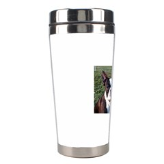 Boston Terrier Stainless Steel Travel Tumblers