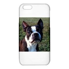Boston Terrier iPhone 6/6S TPU Case