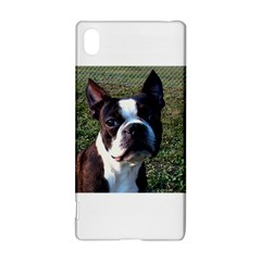 Boston Terrier Sony Xperia Z3+