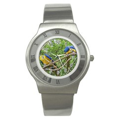 South American Couple Of Parrots Stainless Steel Watch