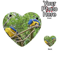 South American Couple Of Parrots Playing Cards 54 (Heart)