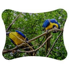 South American Couple Of Parrots Jigsaw Puzzle Photo Stand (Bow)
