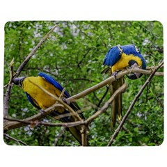 South American Couple Of Parrots Jigsaw Puzzle Photo Stand (rectangular)