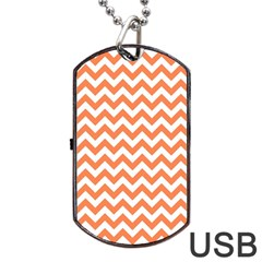 Tangerine Orange & White ZigZag pattern Dog Tag USB Flash (One Side)