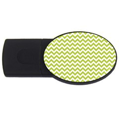 Spring Green & White Zigzag Pattern One Piece Boyleg Swimsuit Usb Flash Drive Oval (4 Gb)