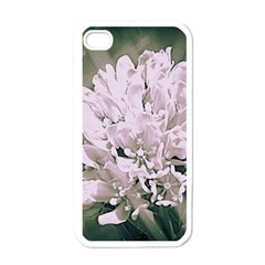 White Flower Apple iPhone 4 Case (White)