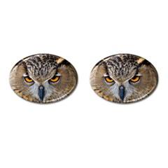 Great Horned Owl 1 Cufflinks (Oval)