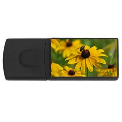 Black eyed Susan USB Flash Drive Rectangular (2 GB)