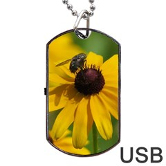 Black eyed Susan Dog Tag USB Flash (Two Sides)