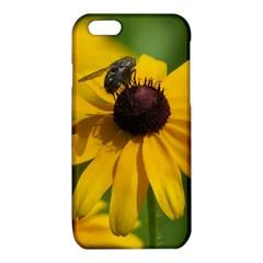 Black eyed Susan iPhone 6/6S TPU Case