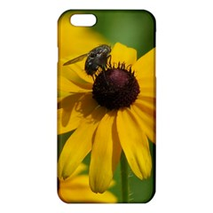 Black eyed Susan iPhone 6 Plus/6S Plus TPU Case