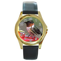 Male Ruby Throated Humming Bird Round Gold Metal Watch