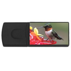 Male Ruby Throated Humming Bird USB Flash Drive Rectangular (1 GB)