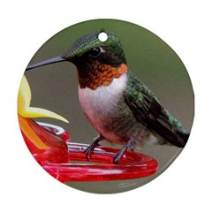 Male Ruby Throated Humming Bird Round Ornament (Two Sides)