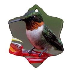 Male Ruby Throated Humming Bird Snowflake Ornament (2-Side)