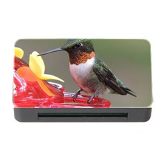 Male Ruby Throated Humming Bird Memory Card Reader with CF