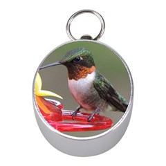 Male Ruby Throated Humming Bird Mini Silver Compasses