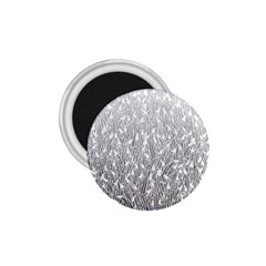 Grey Ombre feather pattern, white, 1.75  Magnet