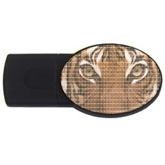 Tiger Tiger USB Flash Drive Oval (2 GB)