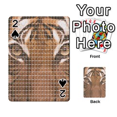Tiger Tiger Playing Cards 54 Designs