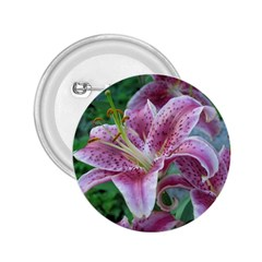 Pink Tiger Lilies 2.25  Buttons