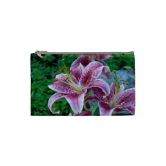 Pink Tiger Lilies Cosmetic Bag (Small)